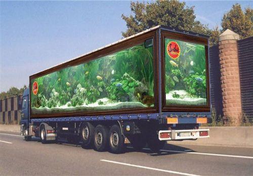 Aquarium_truck