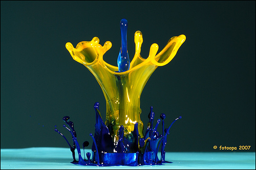 Blue and yellow water droplet photo