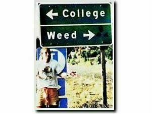 College_weed